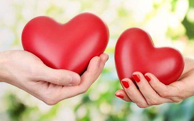 Pelajaran Cinta